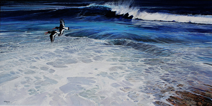 Oyster Catchers by Alan B Hayman