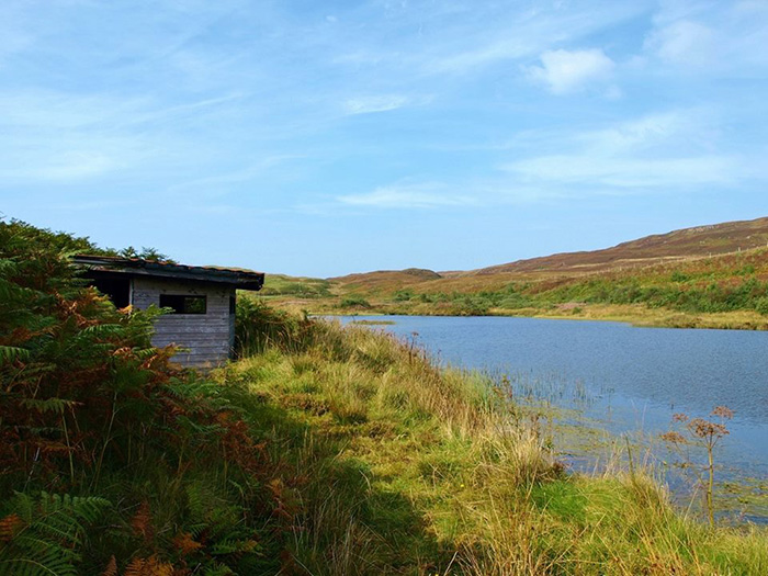 Hide on Lochan na Buick